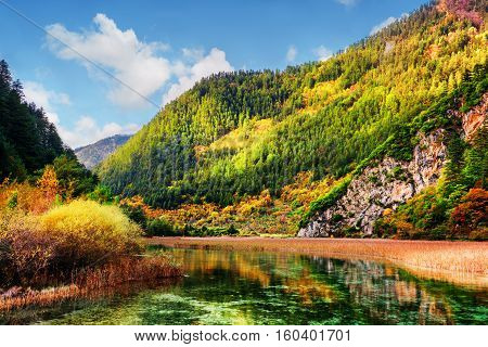Beautiful View Of Scenic River With Crystal Water