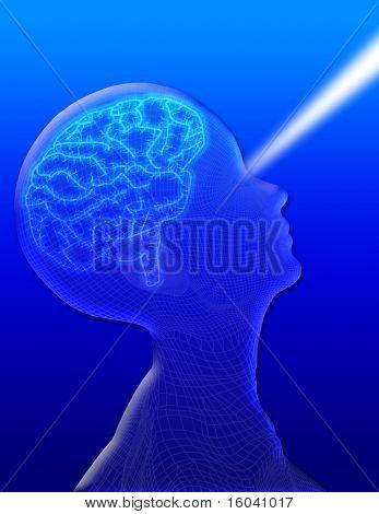 Visión del cerebro