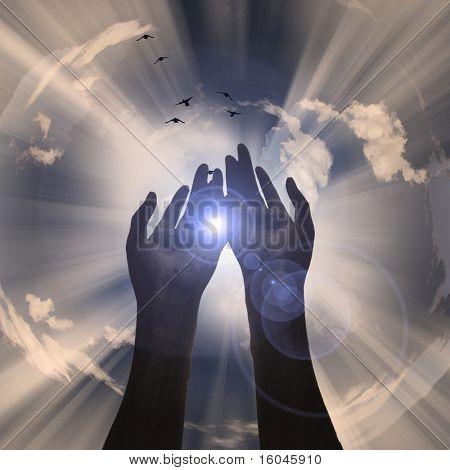 Hands reveal light