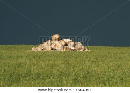 Rocks On Hill