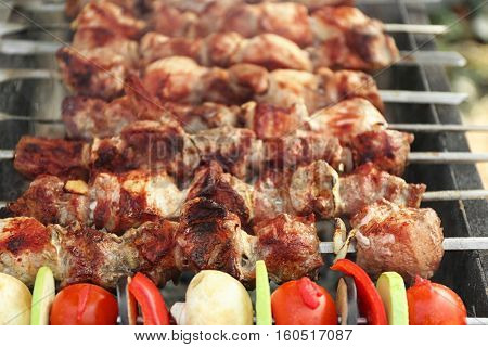 Fresh tasty barbecue with vegetables in brazier outdoors