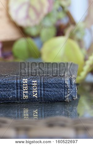 Old Holy Bible on a glass table with a green background.