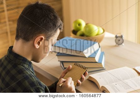 Young Schoolboy Writing On Notebook And Studying On Desk At Home