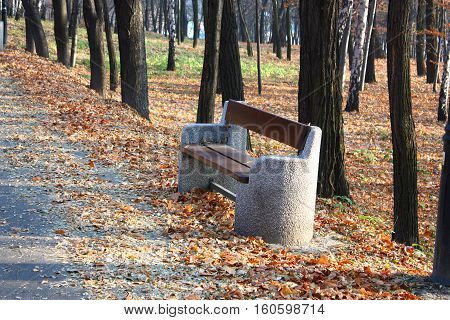 Bench in the autumn alley in park