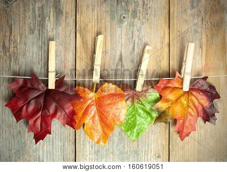 Autumn leave hanging on a clothes line with pegs against a wooden background