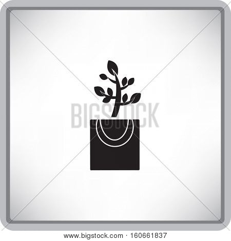 Flat icon. The plant is in the package. Gift - a flower.