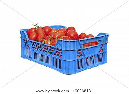 Red tomatoes in a plastic box isolated on white background