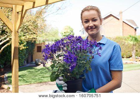 Portrait Of Female Landscape Gardener Holding Plant