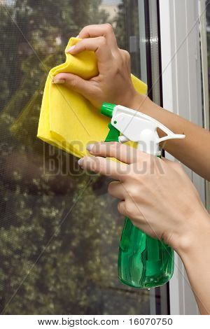 Hands with spray cleaning the  window