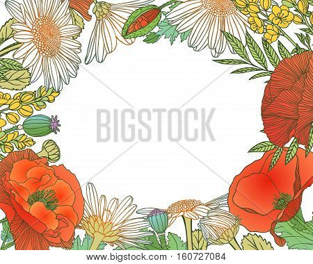 Colorful floral frame of different flowers. Vector background