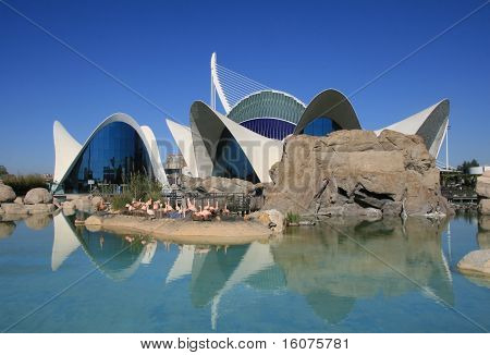 View of Oceanographic in the City of Arts and Sciences