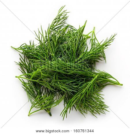 Fresh Dill Isolated On White, From Above