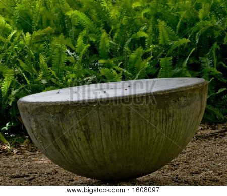 Concrete Seat With Fern