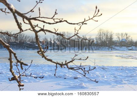 Beautiful winter day. Snow on the bank of the river. Trees under the snow. The low winter sun. Houses on the   river bank. Focusing on the far side of the river. In front of the tree branch in soft focus.