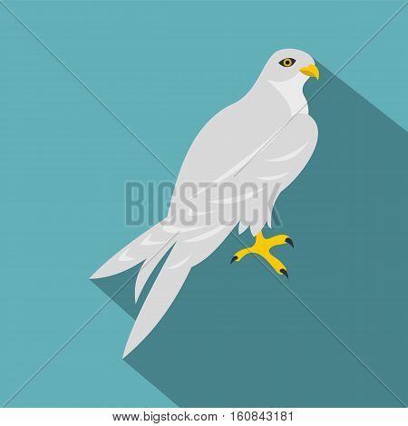 Hawk icon. Flat illustration of hawk vector icon for web