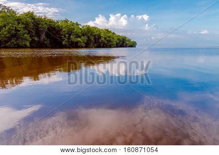 Caroni River mouth open sea through mangroves