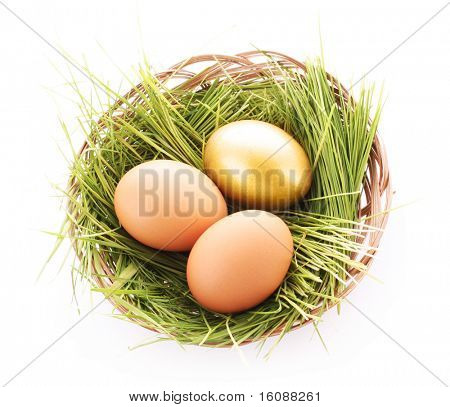 Gold  egg in nest isolated on white