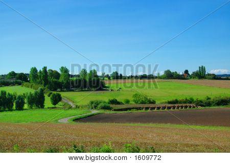 Idyllic Farm Landscape