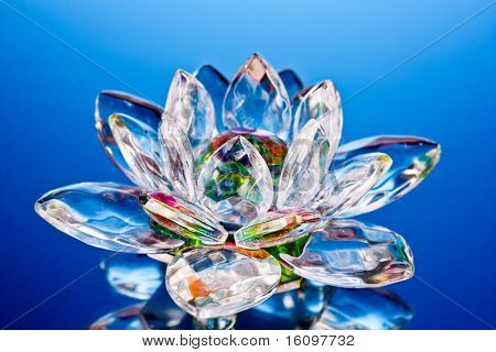 Glass Lotus Flower On Blue Poster Id16097732