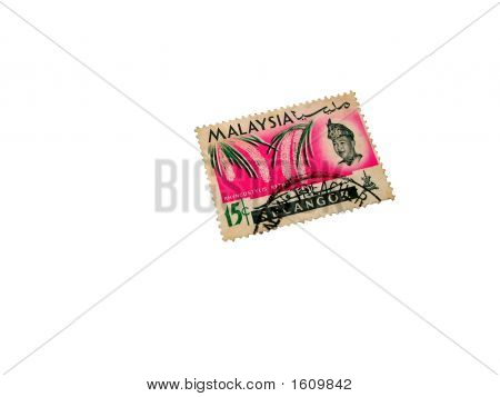 Malaysian Postal Stamp Of Seventies Showing Rhyncostylis