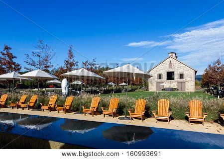 Relaxing In The Vineyard