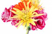 foto of tuberose  - red gerbera tuberose and gold mums flowers bouquet isolated on a pure white background with space for text - JPG