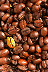 stock photo of unicity  - Golden coffee bean  - JPG