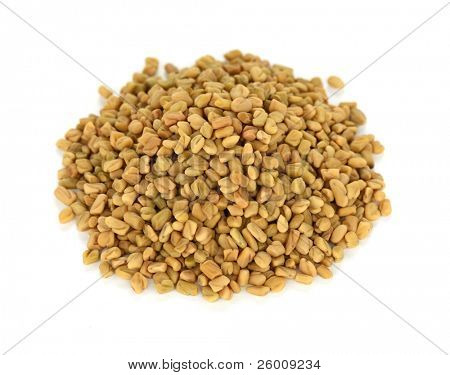 fenugreek seeds , indian spice