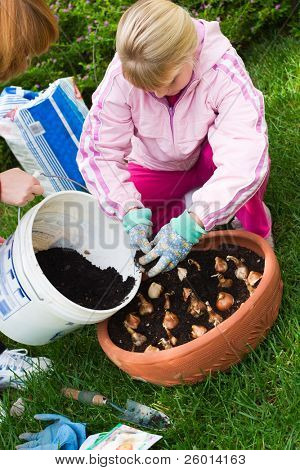 Family time outside in the garden by planting spring bulbs into container during autumn