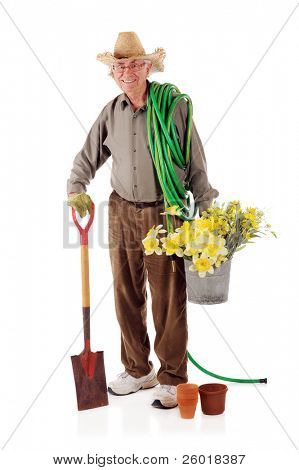 A smiling senior man with a garden hose and shovel and carrying a double bucket filled with daffodils.    On a white background.
