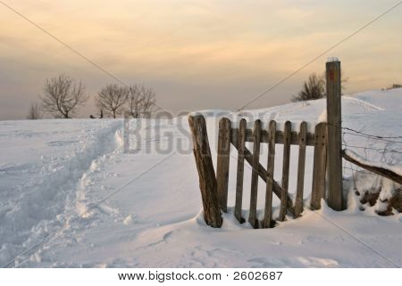 Wintry Countryside Scene At Dusk