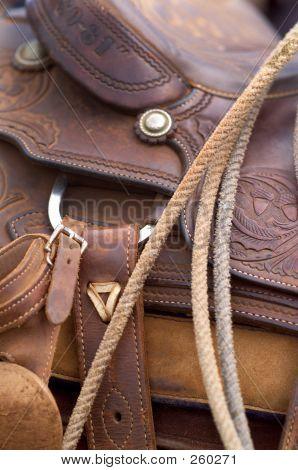 Saddle_saddle24 ocidental