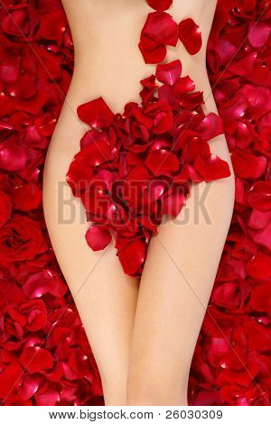 Perfect torso of slim tanned naked woman lying on red roses petals