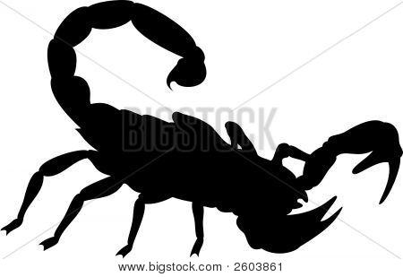 Scorpion.Eps