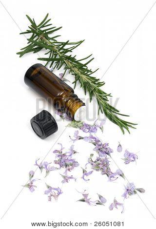 Rosmarin Blumen und ätherischen Ölen Flasche isoliert auf weiss