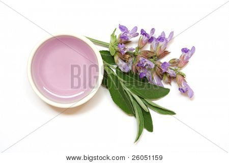 Sage flowers, leafs and extract used for aromatherapy
