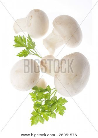 Champignon (white button) mushrooms isolated on white background