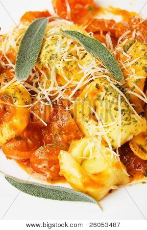 Italian tortellini pasta in basilico sauce with grated parmesan cheese