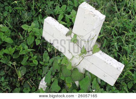 a forgotten grave stone