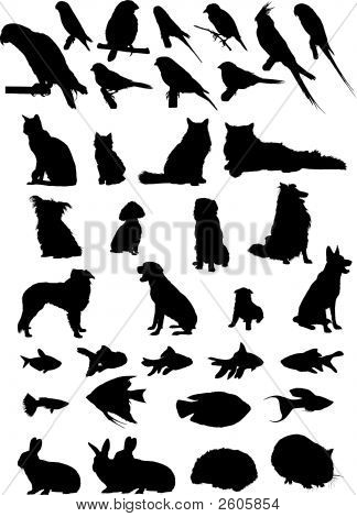 Animal Pets Silhouettes.Eps