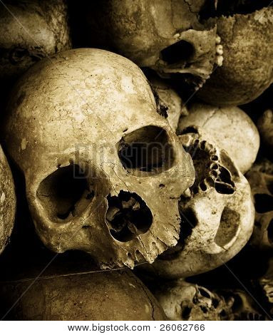 Schädel in Kambodscha