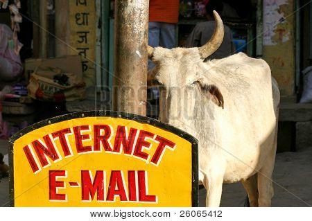 e-mail & internet em estilo indiano