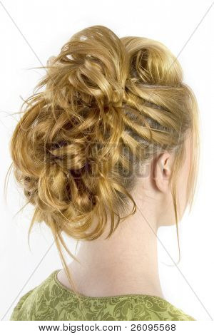 Rear view of hair style shot over white.