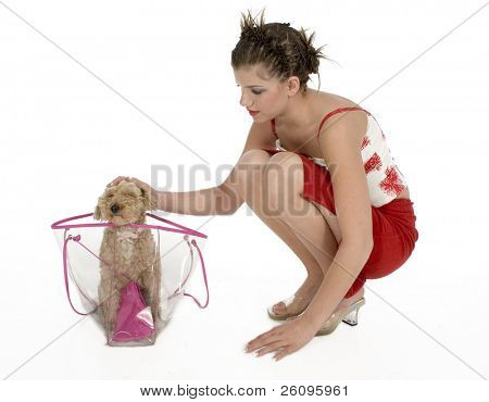 Beautiful young woman with dog in plastic see through purse.