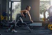Sexy Athletic Woman Pumping Up Muscles With Dumbbells At Gym. Hot Girl, With Hair, Laid In Tail, Doi poster