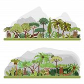 Vector Jungle Trees Collection, Tropical Jungle Flat Illustration With Palms, Rainforest, Tropical J poster