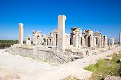 picture of xerxes  - Xerxes palace in Persepolis - JPG