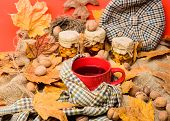 Warming Beverage Concept. Mug Cozy Aromatic Tea Beverage In Scarf And Treats. Cozy Autumnal Atmosphe poster