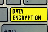 Text Sign Showing Data Encryption. Conceptual Photo Symmetric Key Algorithm For The Encrypting Elect poster