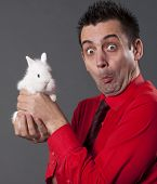 stock photo of peter cottontail  - Funny man with white baby rabbit - JPG